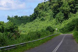 Tài xế xe tải ở Indonesia suýt chết sau khi dùng Google Maps để đi qua vách đá