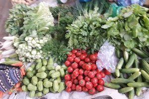 Hà Nội: Thị trường dịp trước, trong và sau Tết không có nhiều biến động