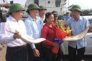 Một ngư dân Quảng Trị trúng mẻ cá 7 tỉ đồng ngày đầu năm mới