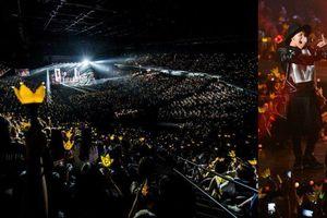 Một mình một concert, những nghệ sĩ này vẫn 'hút' fan như thường!