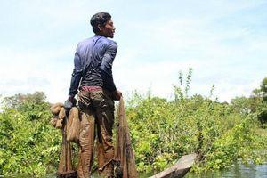 Kế hoạch chiến lược vùng đất ngập nước khu vực Indo-Burma giai đoạn 2019-2024