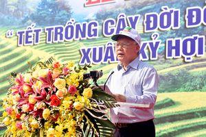 Yên Bái: Tổng Bí thư, Chủ tịch nước Nguyễn Phú Trọng phát động Tết trồng cây