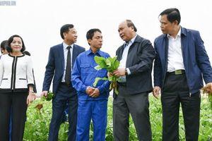 Nông nghiệp thông minh có thể đưa Việt Nam hoàn thành mục tiêu kép