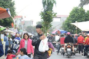 Hàng vạn người đổ về chợ Viềng khiến đường tắc hàng km, ai cũng lựa mua chậu hoa, cây cảnh lấy may đầu năm