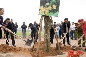 Huyện Gia Lâm phấn đấu trồng mới 4.500 cây xanh bóng mát