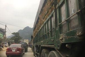 Hàng nghìn tấn dưa hấu, thanh long ùn ứ ở cửa khẩu Tân Thanh