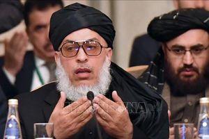 Taliban công bố phái đoàn tham gia đàm phán hòa bình với Mỹ