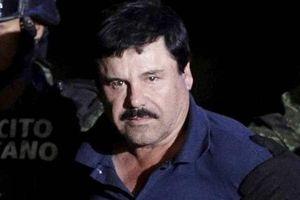Trùm ma túy Mexico bị kết án 10 tội danh tại Mỹ