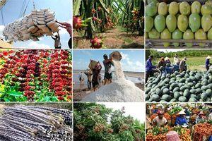 'Đón đầu' cơ hội, xuất khẩu nông sản 2019 hy vọng vào một khởi sắc mới