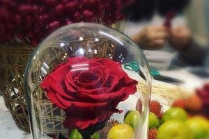 Chi 3,5 triệu mua hoa hồng hay 230 nghìn mua vàng tặng bạn gái dịp Valentine?
