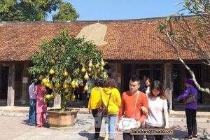 Bí ẩn chùa Chuông Phố Hiến