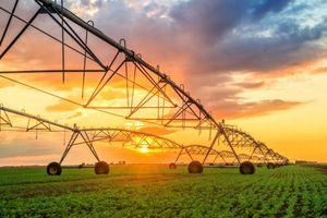 Tập đoàn GFS với khát vọng phát triển nông nghiệp hữu cơ công nghệ cao