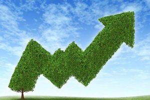 Hà Nội khẩn trương hoàn thiện dự thảo kế hoạch hành động tăng trưởng xanh