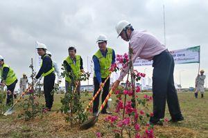 Tổng cục ĐBVN: Phát động phong trào Tết trồng cây, đảm bảo ATGT đường bộ