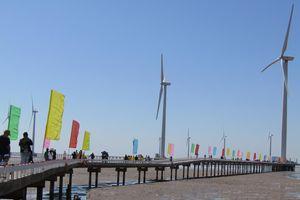 Độc đáo cánh đồng điện gió ở Bạc Liêu