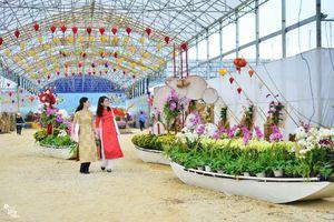 Những chuyến đò tết đặc biệt nhất tại triển lãm hoa lan, thung lũng hoa Bái Đính