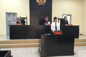 Vụ kiện Thần đồng đất Việt: Tòa vẫn chưa đưa ra được phán quyết cuối cùng