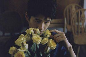 Mẫu bạn trai ngày Valentine 2019: Dương Dương, Đặng Luân, Vương Tuấn Khải hay Chu Nhất Long?