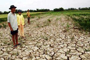 Tây Nguyên: Thiếu nước nghiêm trọng khi bước vào mùa khô 2019