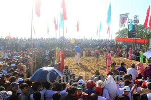 Hơn 100 đô vật tham gia tranh tài tại Hội vật làng Sình