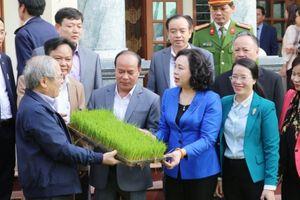 Phó Bí thư Thường trực Thành ủy Hà Nội kiểm tra công tác triển khai vụ Xuân tại Phú Xuyên