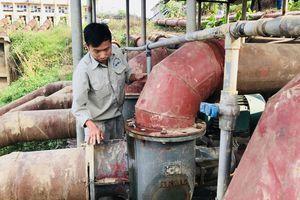 Mực nước sông Hồng thấp kỷ lục: 2.000ha ruộng Mê Linh thiếu nước sản xuất