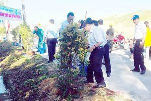 Hưởng ứng 'Tết trồng cây'