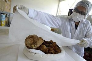 Mỹ trao trả xác ướp trẻ em 2.000 năm tuổi cho Peru