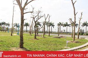 Thành phố Hà Tĩnh chuẩn bị đưa vào sử dụng 5 tiểu công viên