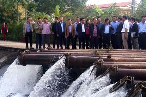 Hơn 86% diện tích của Hà Nội đủ nước gieo cấy