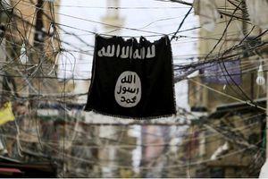 Hầu hết phiến quân IS miền đông Syria 'sẵn sàng' đầu hàng SDF