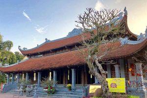 Đầu năm về Bạch Đằng Giang thăm ngôi chùa với cây thị ngàn năm tuổi