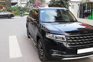 Tưởng nhầm xe sang, chiếc SUV Trung Quốc bị 'vặt' gương