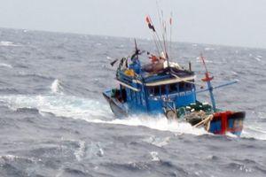 Cà Mau: Cứu nạn thành công tàu cá gặp nạn trên biển