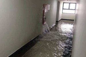 Vỡ đường ống cứu hỏa, tầng 21 chung cư An Bình ngập trong 'biển nước'