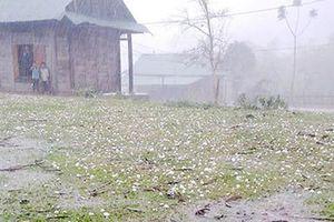 Mưa đá rơi thủng mái nhà tại nhiều tỉnh miền núi phía Bắc