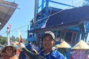 Tết trên biển và những mẻ cá trĩu nặng đầu năm