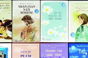 Làm sao hình dung diện mạo văn chương trẻ phương Nam?