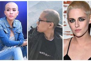 Mỹ nhân gây sốc với mốt cạo trọc đầu: Tiên Tiên khiến fan không nhận ra - Hoa Di Linh vẫn đẹp xuất sắc