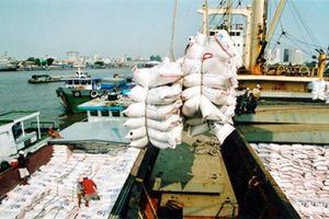 Xuất khẩu gạo sẽ tăng nhẹ trong quý I