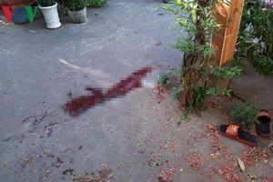 Truy bắt nhóm côn đồ mang hung khí đâm gục người ở Tiền Giang
