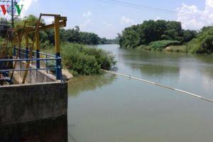 Nước sinh hoạt của TP Đà Nẵng nhiễm bẩn