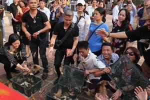 Ảnh, Clip: Du khách thả 190 con chim trước giờ khai ấn đền Trần