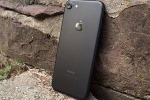 Apple iPhone 6s, 6s Plus, và iPhone 7 bản tân trang 'giá hời' chính thức được bán ra
