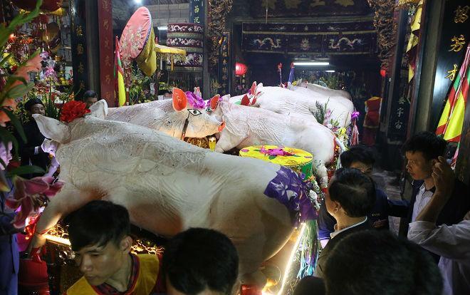 17 'ông lợn' được tuyển chọn và trang trí đẹp mắt tham gia lễ hội ở La Phù