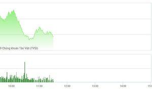 Chứng khoán sáng 18/2: VIC vượt đỉnh không thành, VN-Index đuối sức