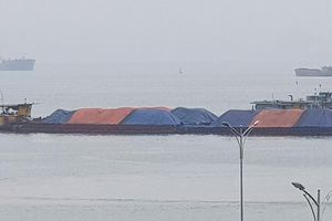 Truy tìm chủ sở hữu gần 3 nghìn tấn than