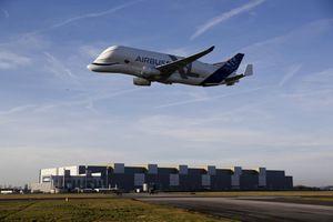 Airbus bán đội 'cá voi bay' khủng Beluga XL