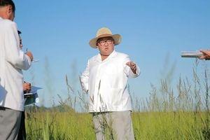 Triều Tiên và cảm hứng từ câu chuyện thành công của Samsung tại Việt Nam