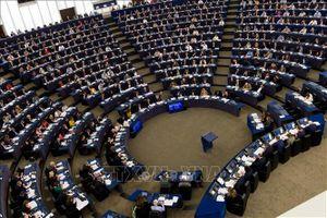 Nghị viện châu Âu ủng hộ khởi động đàm phán hạ thuế quan với Mỹ